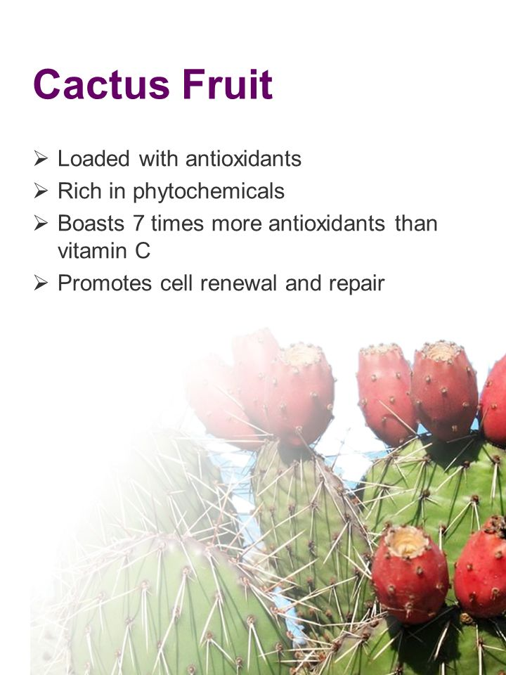 Cactus Fruit Loaded with antioxidants Rich in phytochemicals