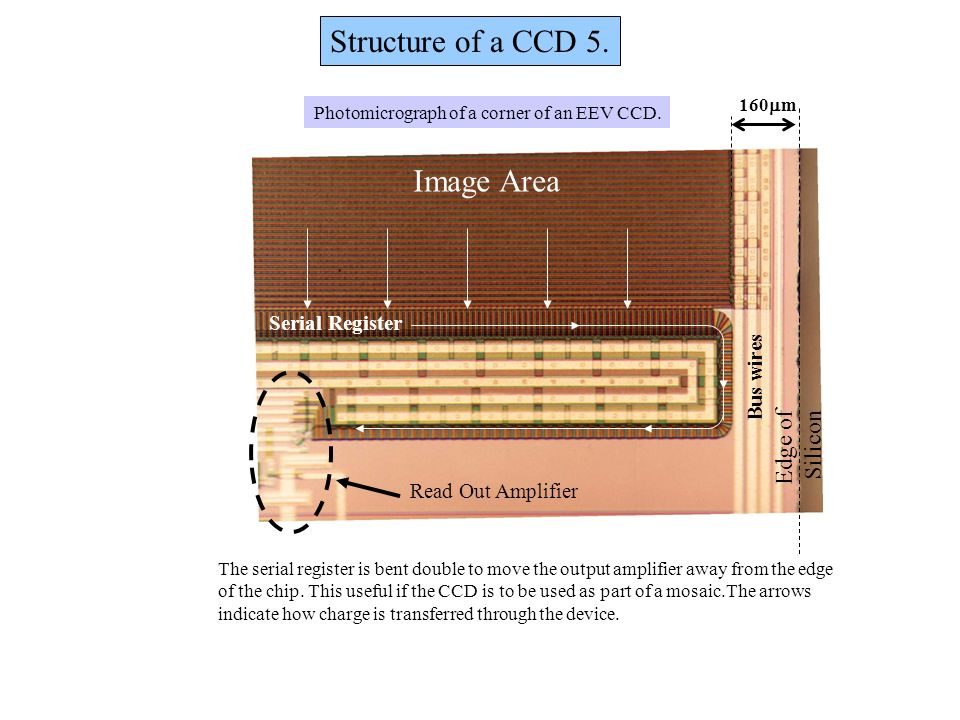 Structure of a CCD 5. Image Area Edge of Silicon Serial Register