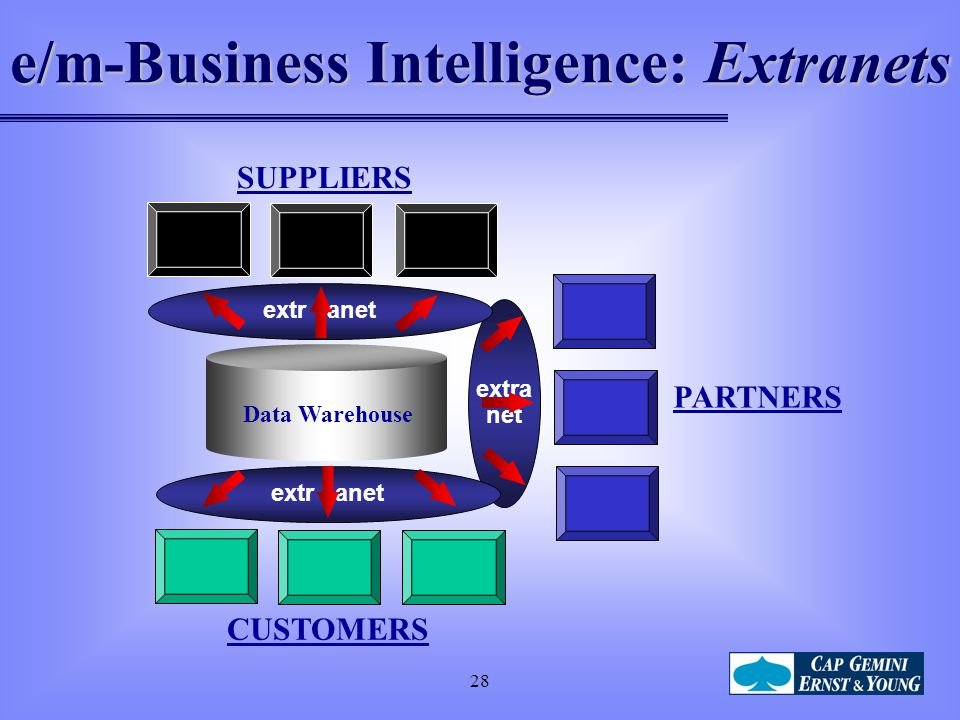 e/m-Business Intelligence: Extranets