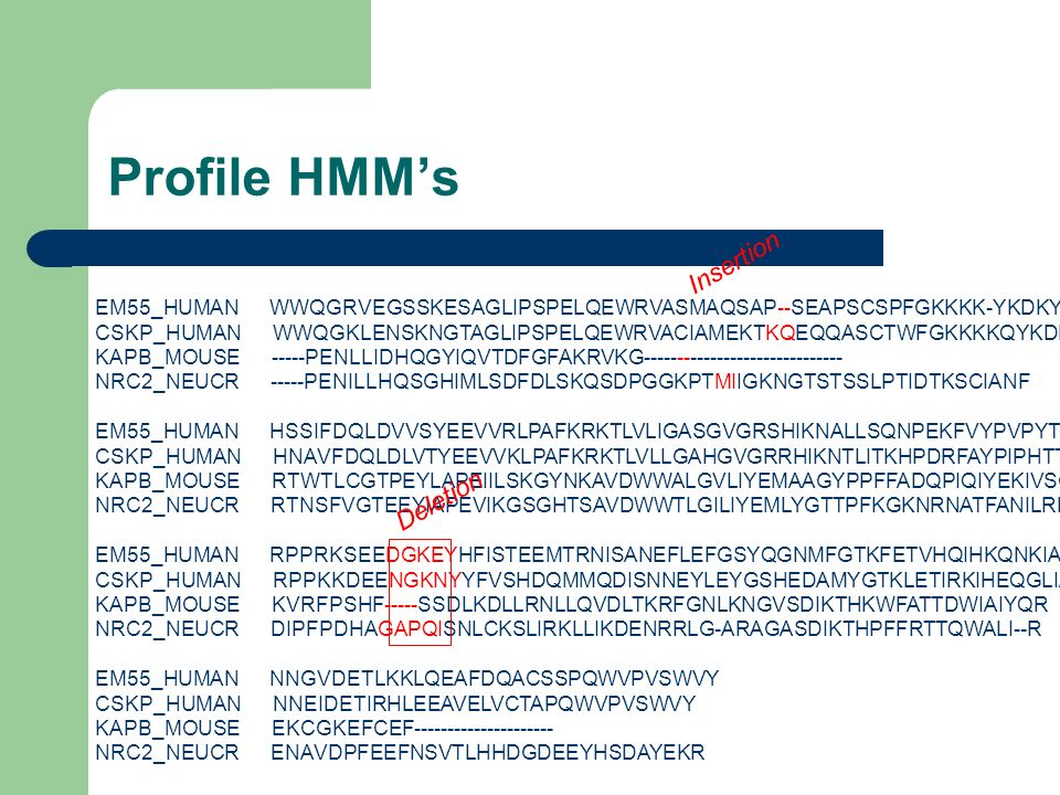 Profile HMM's Insertion Deletion
