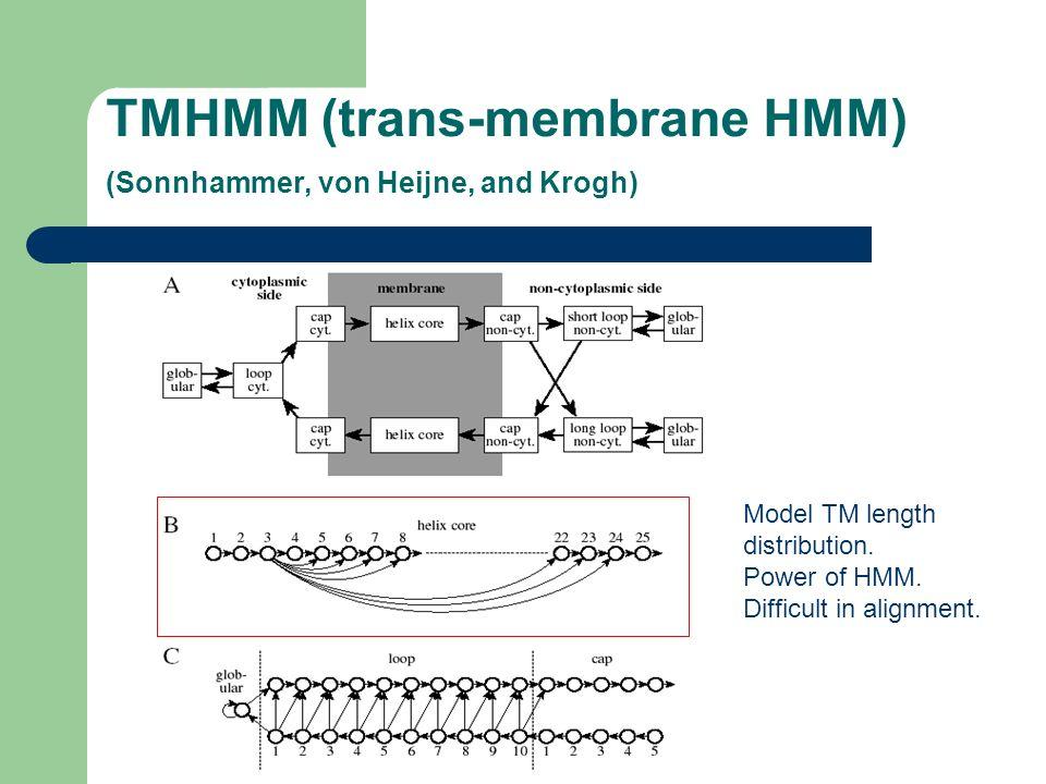 TMHMM (trans-membrane HMM) (Sonnhammer, von Heijne, and Krogh)