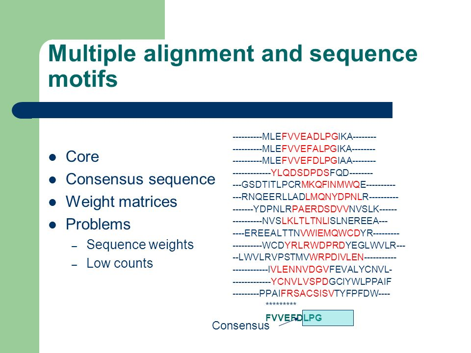 Multiple alignment and sequence motifs