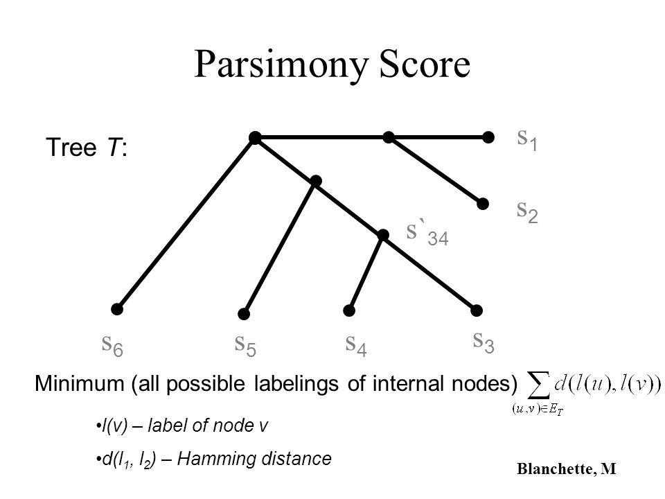 Parsimony Score s1 s2 s`34 s6 s5 s4 s3 Tree T: