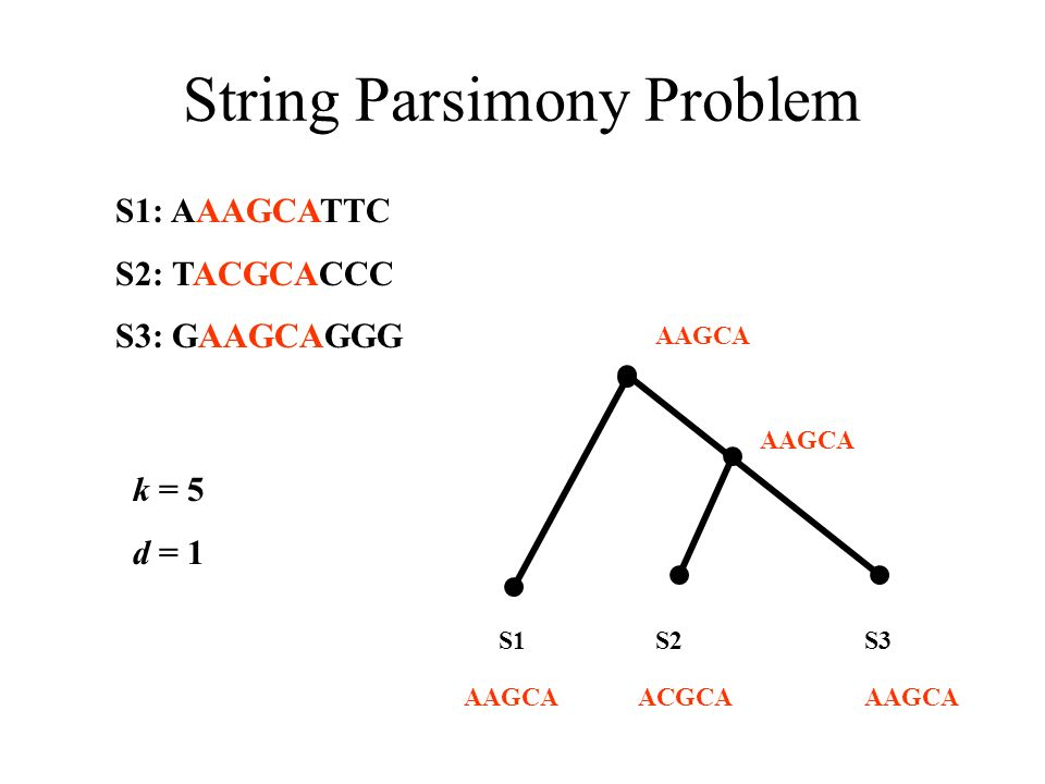 String Parsimony Problem