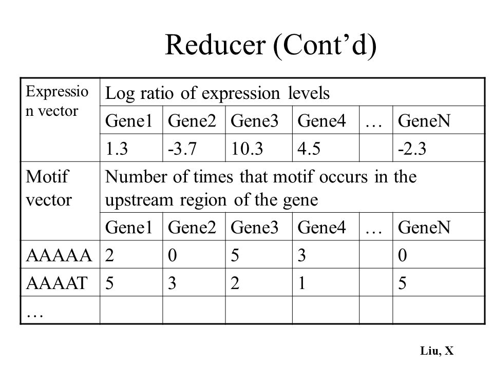 Reducer (Cont'd) Log ratio of expression levels Gene1 Gene2 Gene3