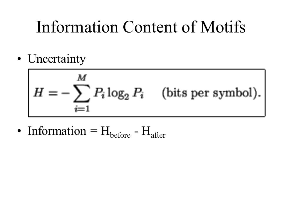 Information Content of Motifs