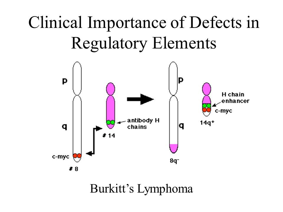 Clinical Importance of Defects in Regulatory Elements