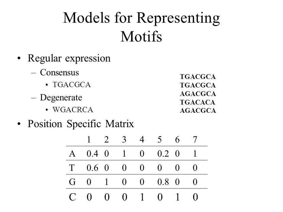 Models for Representing Motifs