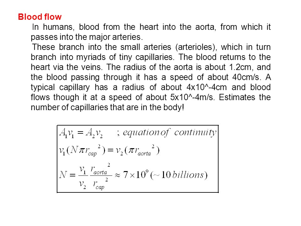 Blood flow In humans, blood from the heart into the aorta, from which it passes into the major arteries.
