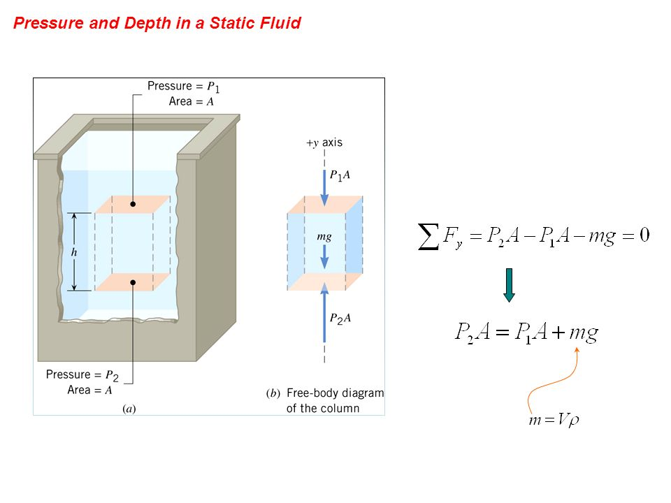 Pressure and Depth in a Static Fluid