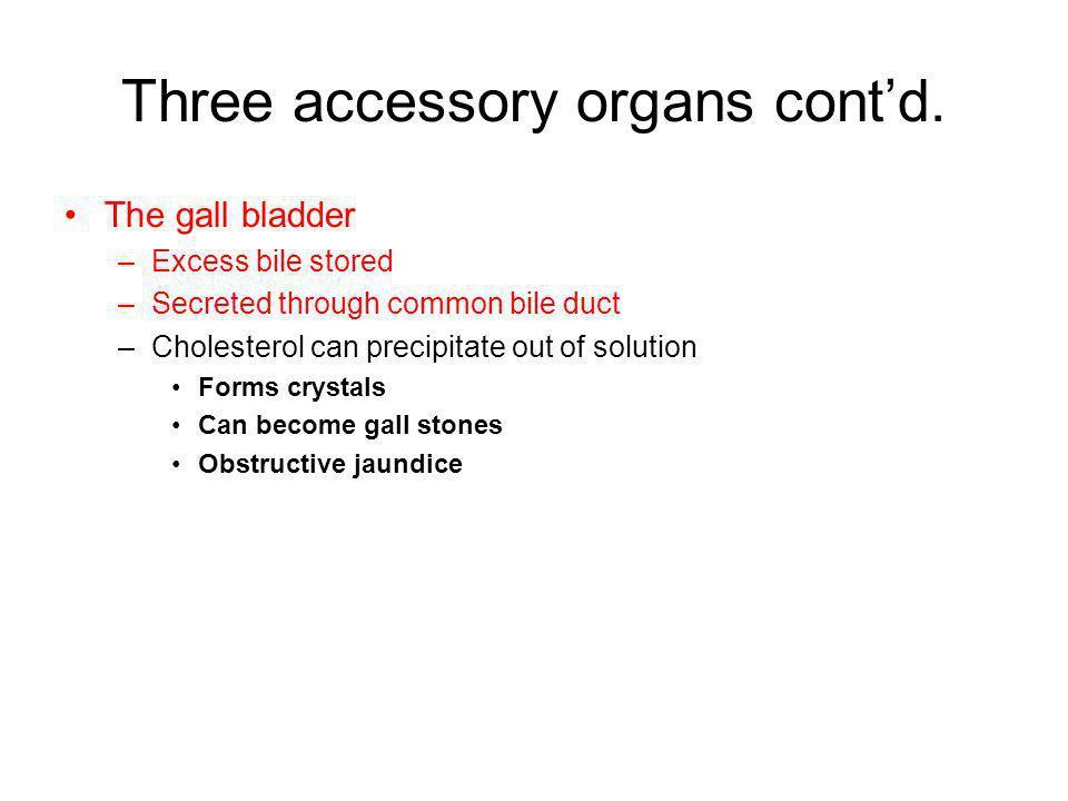 Three accessory organs cont'd.