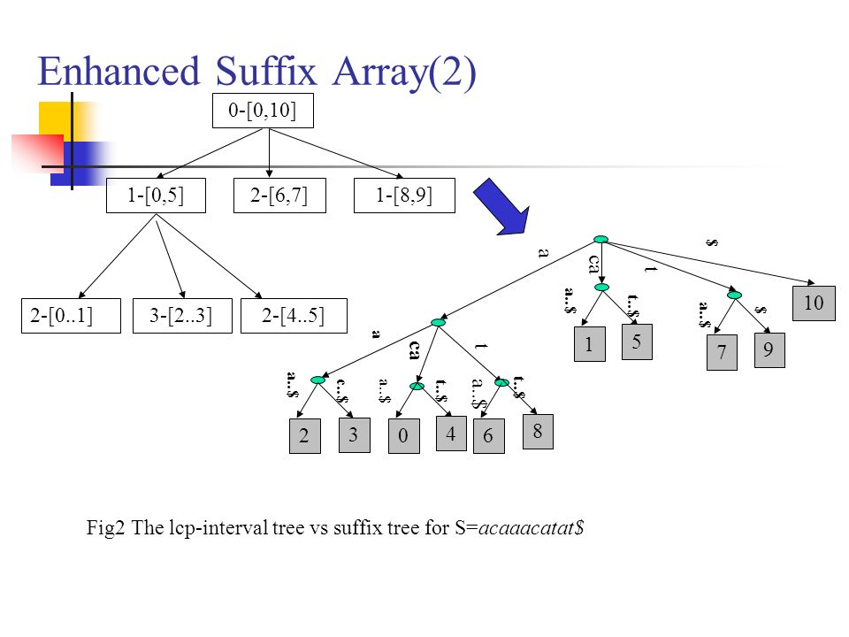 Enhanced Suffix Array(2)
