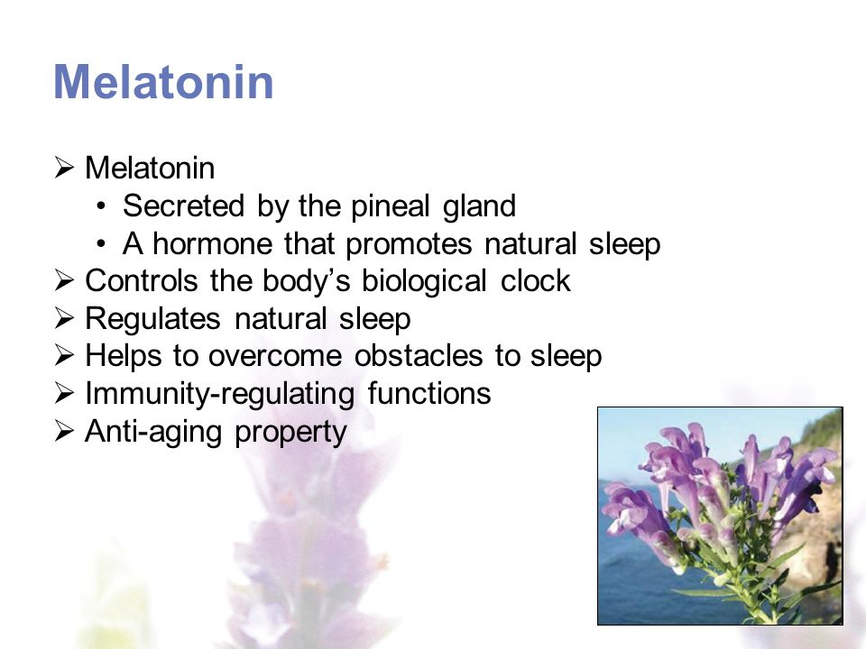 Melatonin Melatonin Secreted by the pineal gland