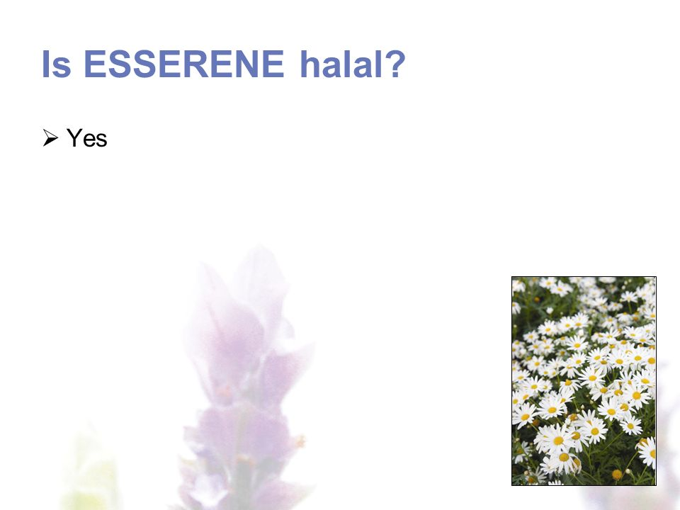 Is ESSERENE halal Yes
