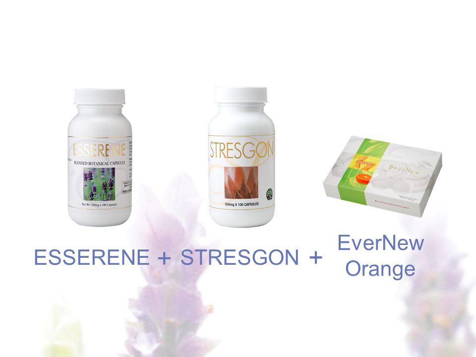EverNew Orange ESSERENE + + STRESGON