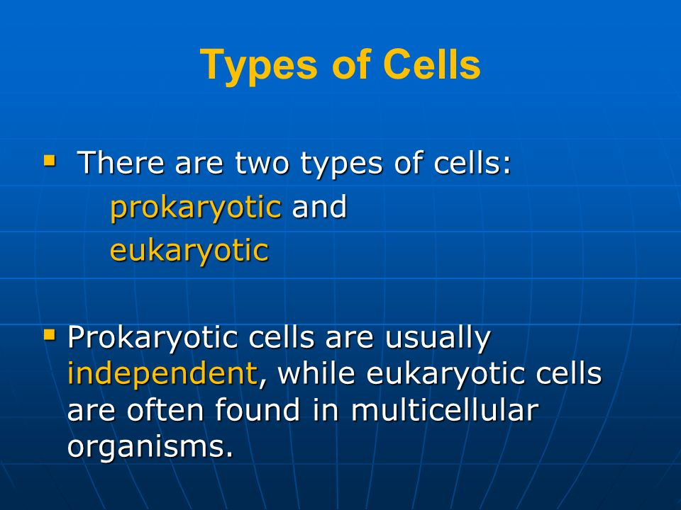 Types of Cells There are two types of cells: prokaryotic and