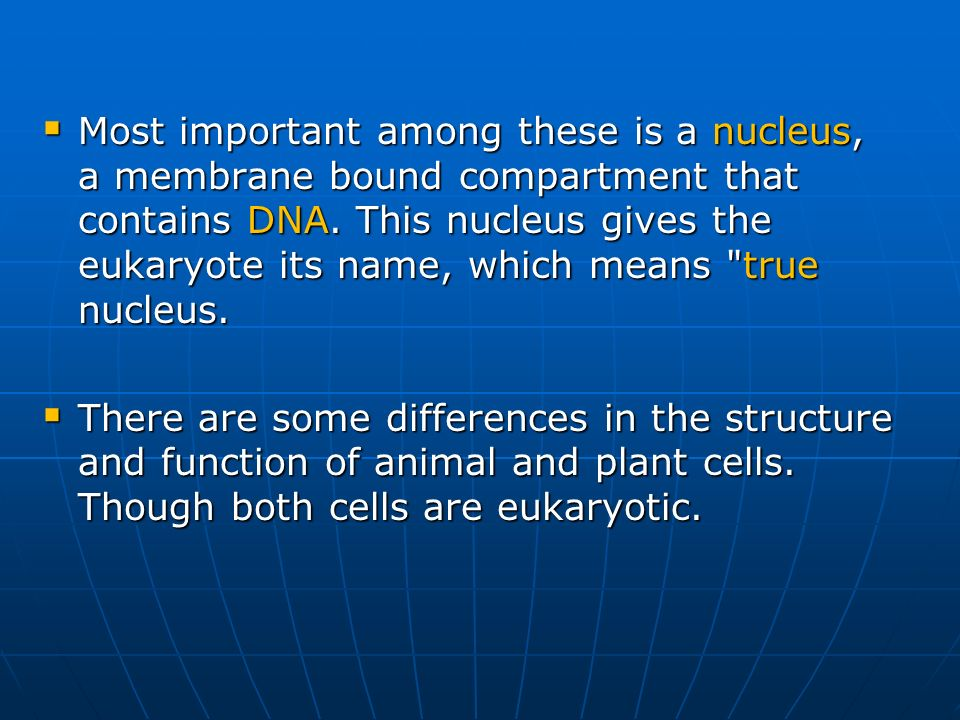 Most important among these is a nucleus, a membrane bound compartment that contains DNA. This nucleus gives the eukaryote its name, which means true nucleus.