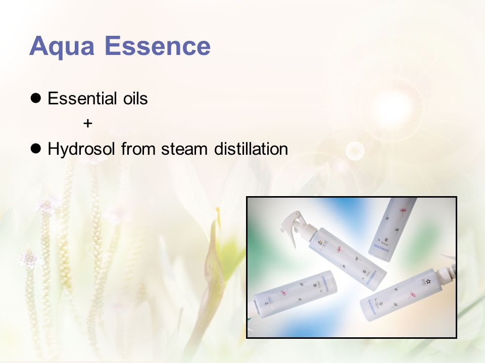 Aqua Essence Essential oils + Hydrosol from steam distillation