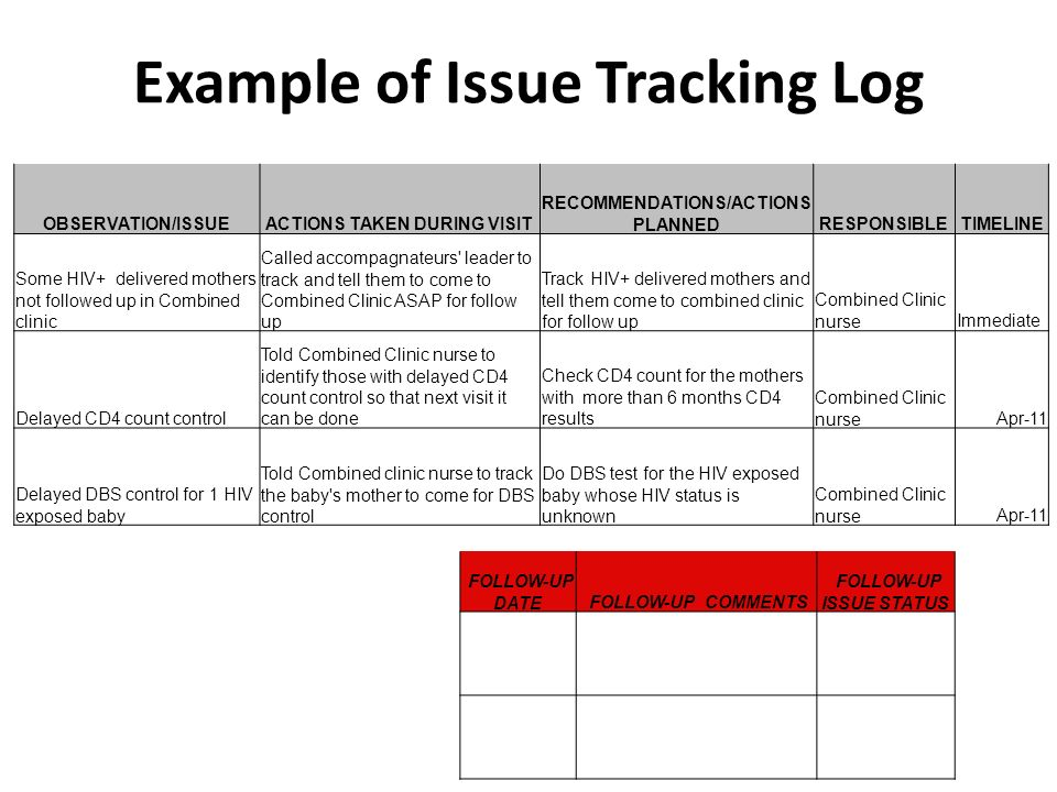 Example of Issue Tracking Log