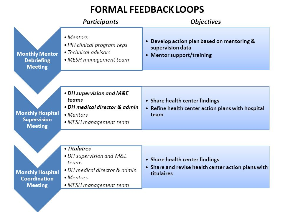 FORMAL FEEDBACK LOOPS Participants Objectives
