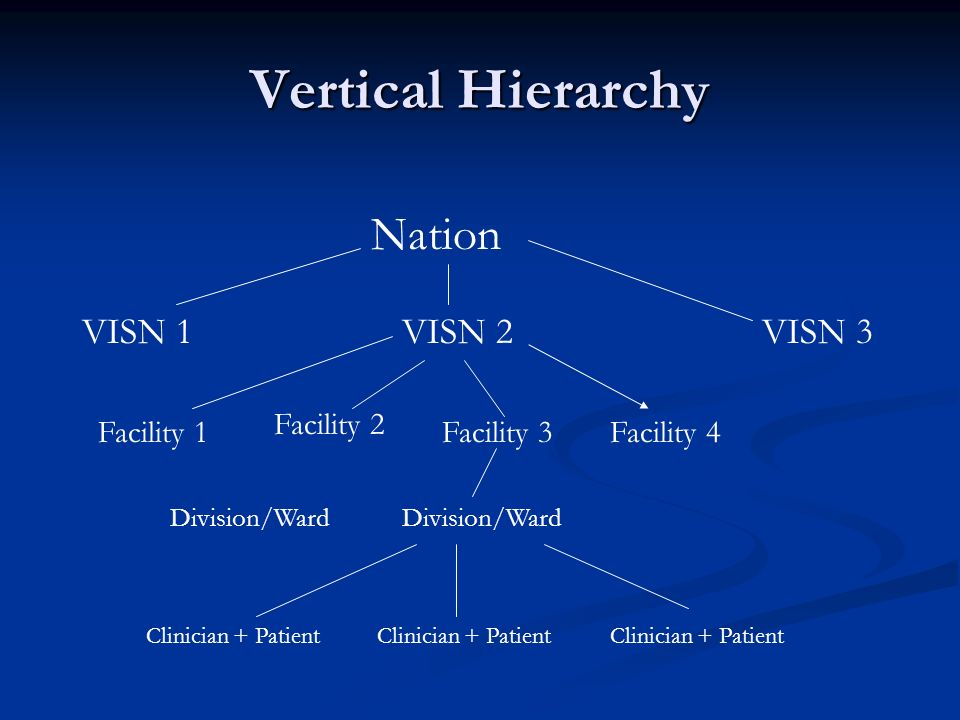 Vertical Hierarchy Nation VISN 1 VISN 2 VISN 3 Facility 2 Facility 1