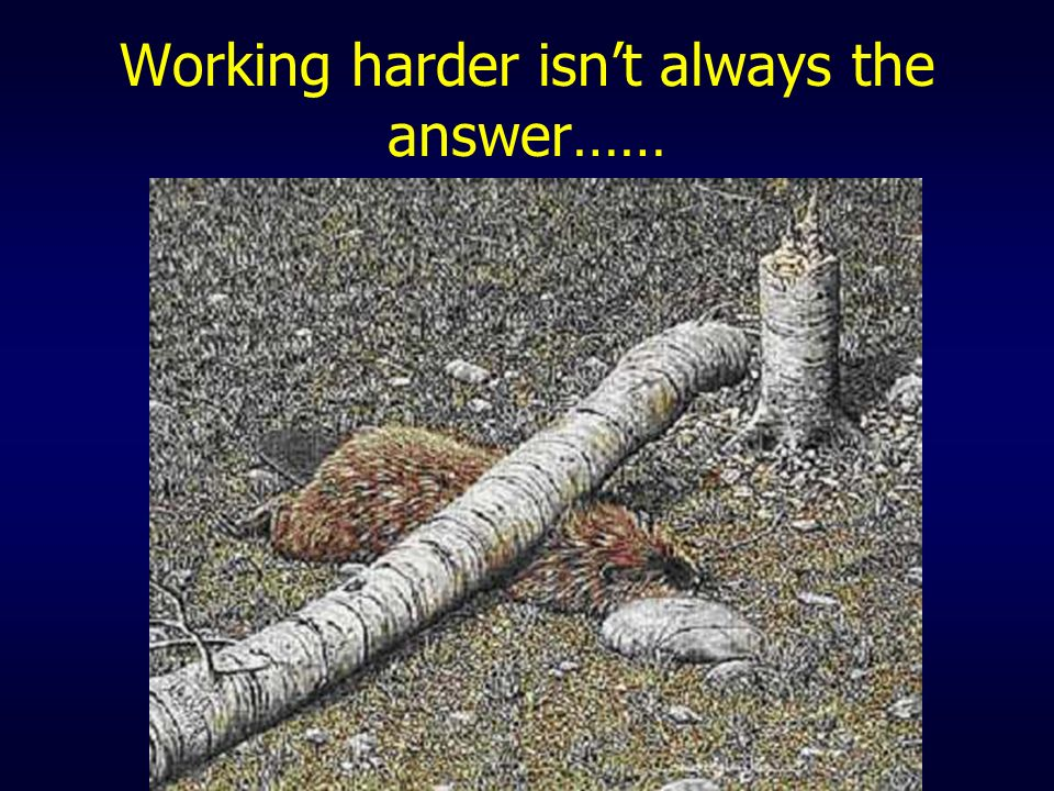 Working harder isn't always the answer……