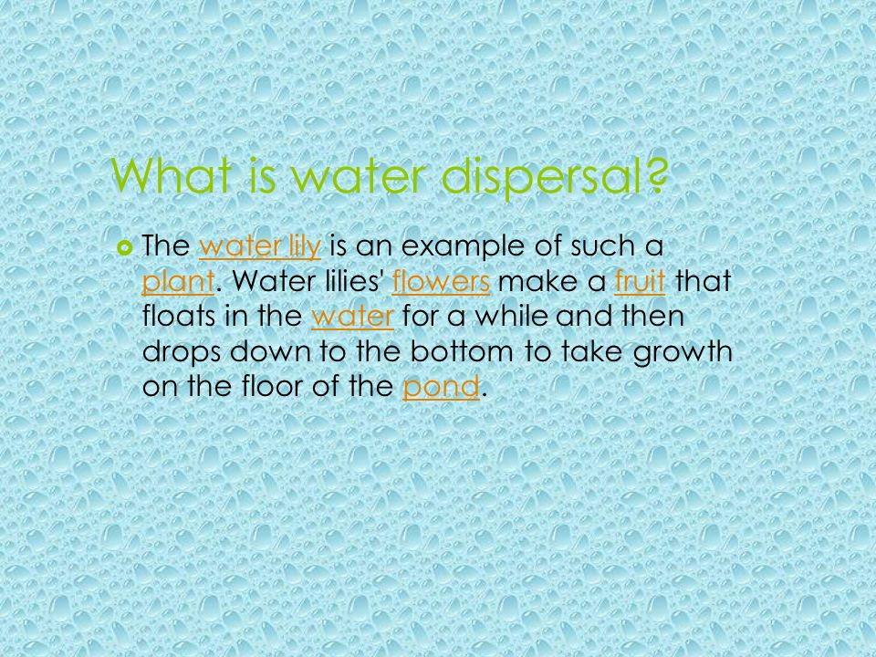 What is water dispersal