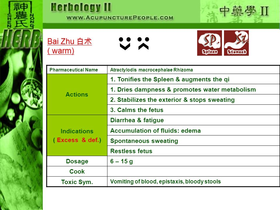 Bai Zhu 白术 ( warm) Actions 1. Tonifies the Spleen & augments the qi
