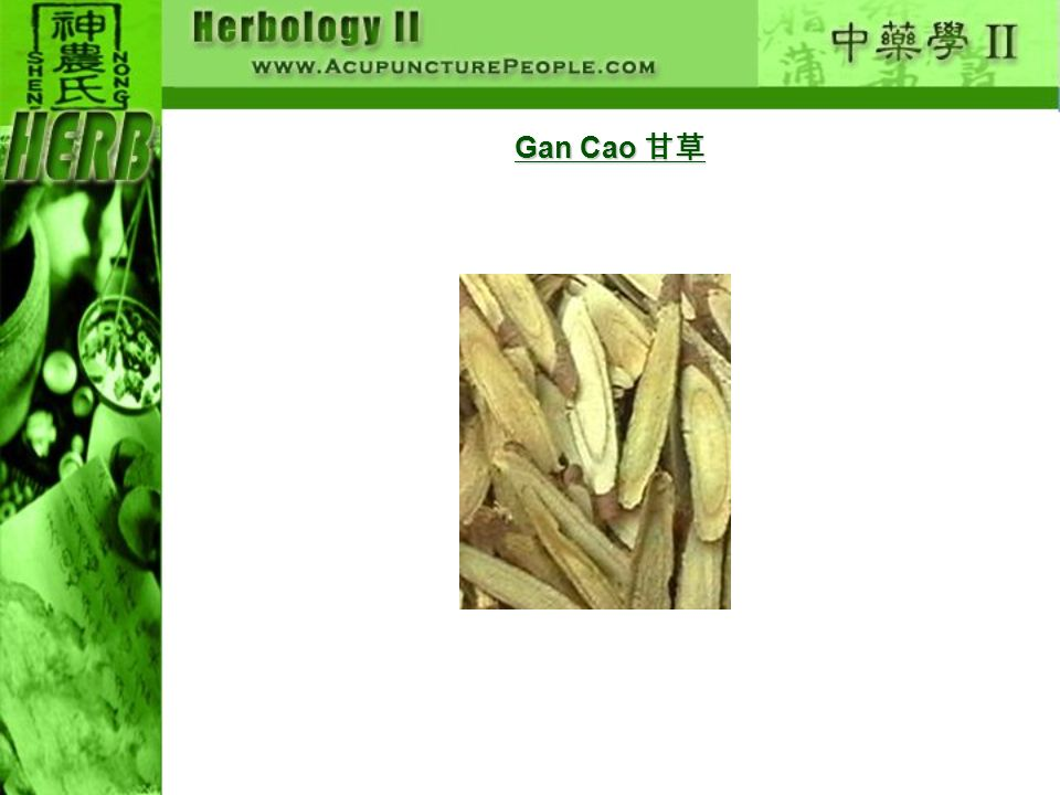 Gan Cao 甘草