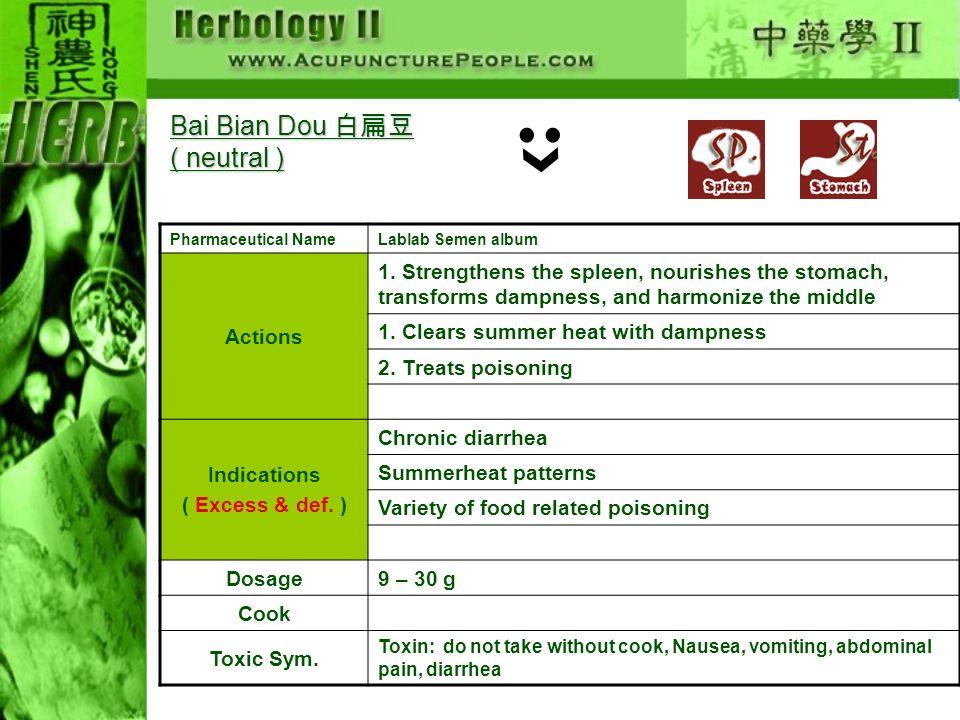 Bai Bian Dou 白扁豆( neutral )