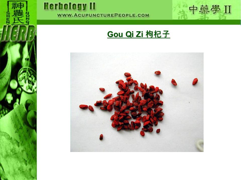 Gou Qi Zi 枸杞子