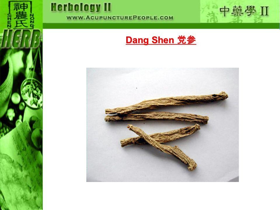 Dang Shen 党参