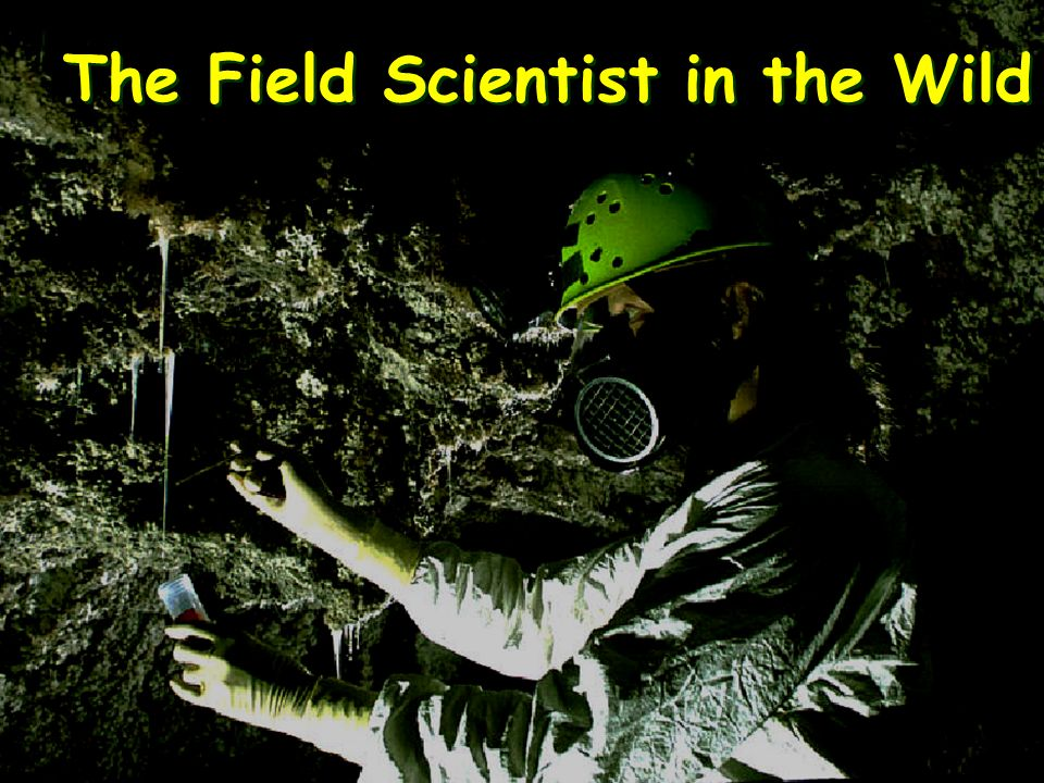 The Field Scientist in the Wild