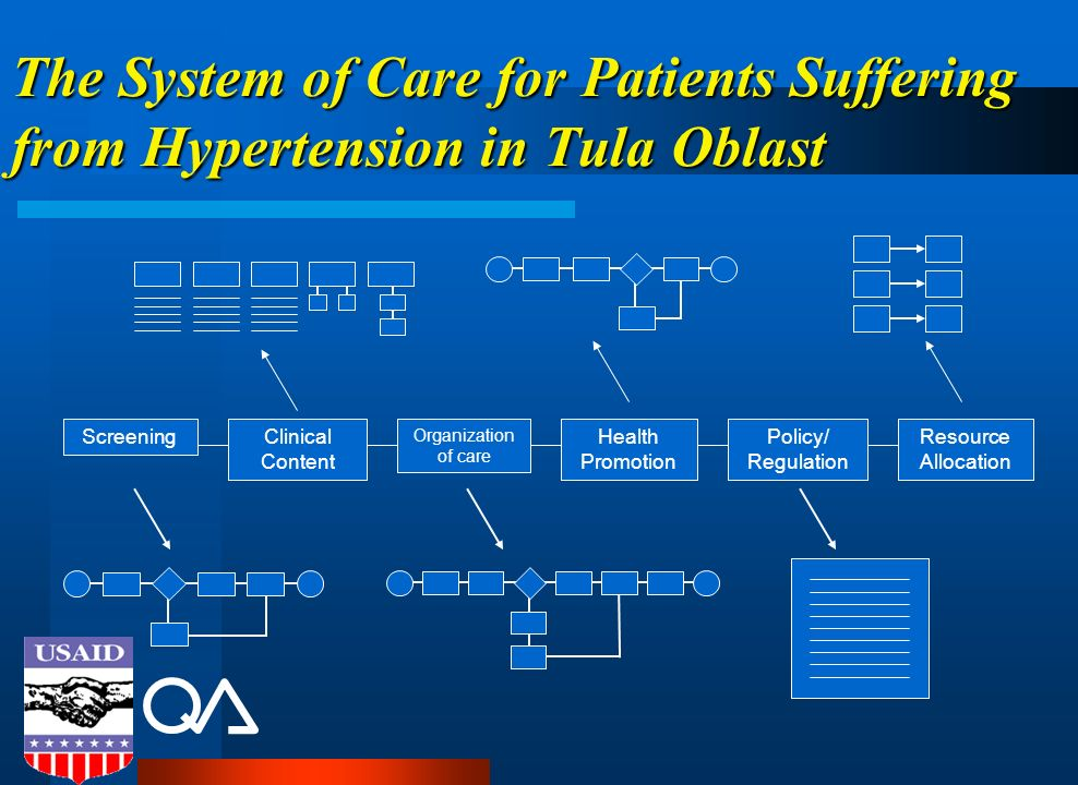 The System of Care for Patients Suffering from Hypertension in Tula Oblast