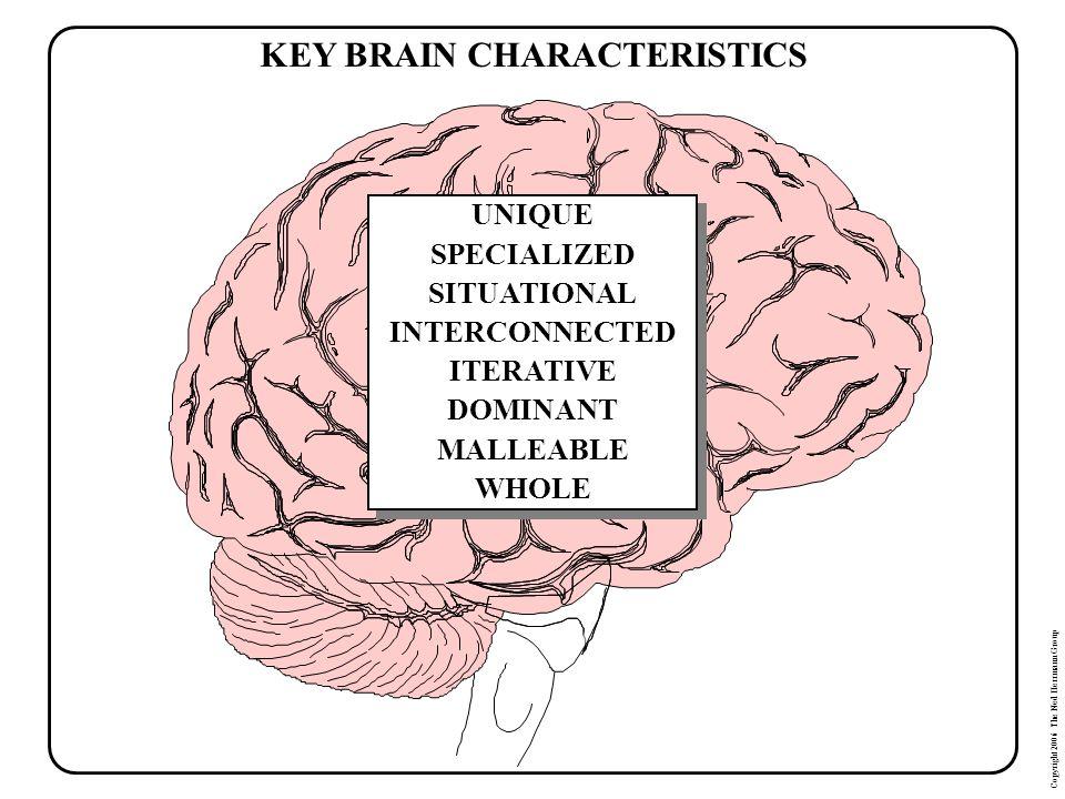 KEY BRAIN CHARACTERISTICS