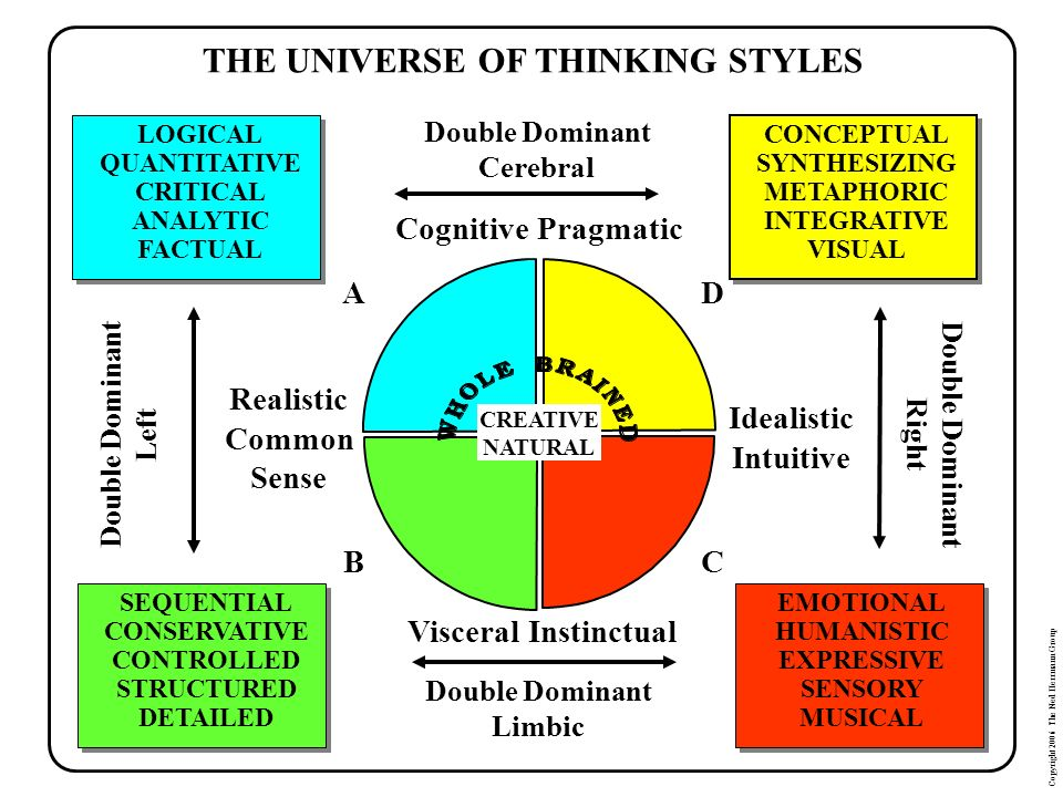 THE UNIVERSE OF THINKING STYLES