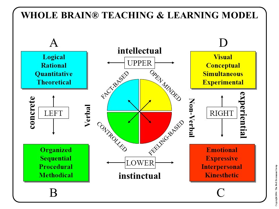 WHOLE BRAIN® TEACHING & LEARNING MODEL
