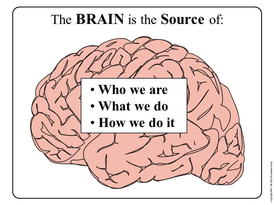 The BRAIN is the Source of: