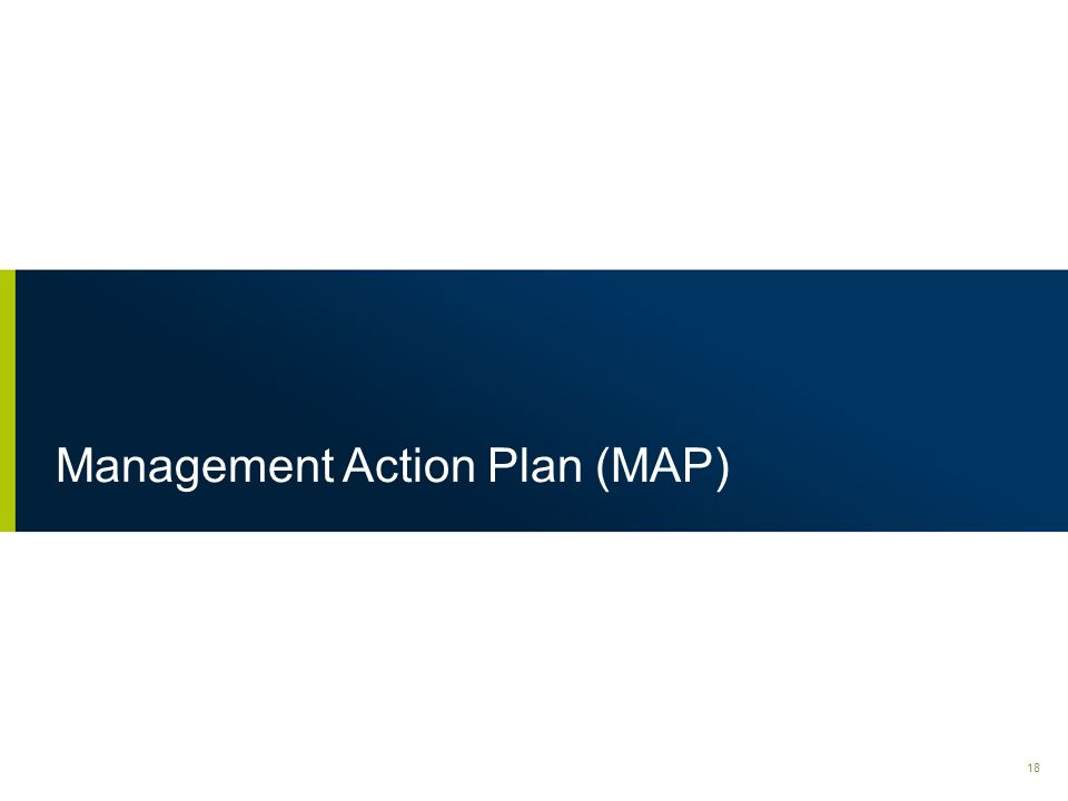 Management Action Plan (MAP)