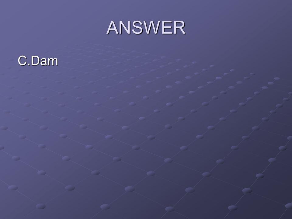 ANSWER C.Dam
