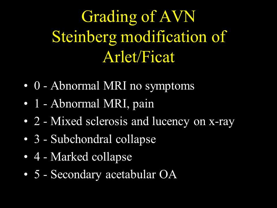 Grading of AVN Steinberg modification of Arlet/Ficat
