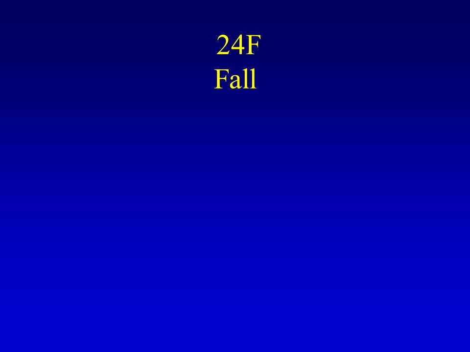 24F Fall