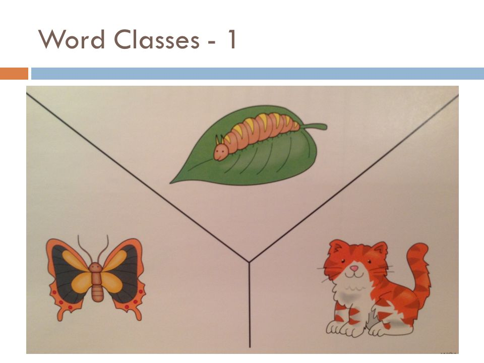 Word Classes - 1 WC1 5