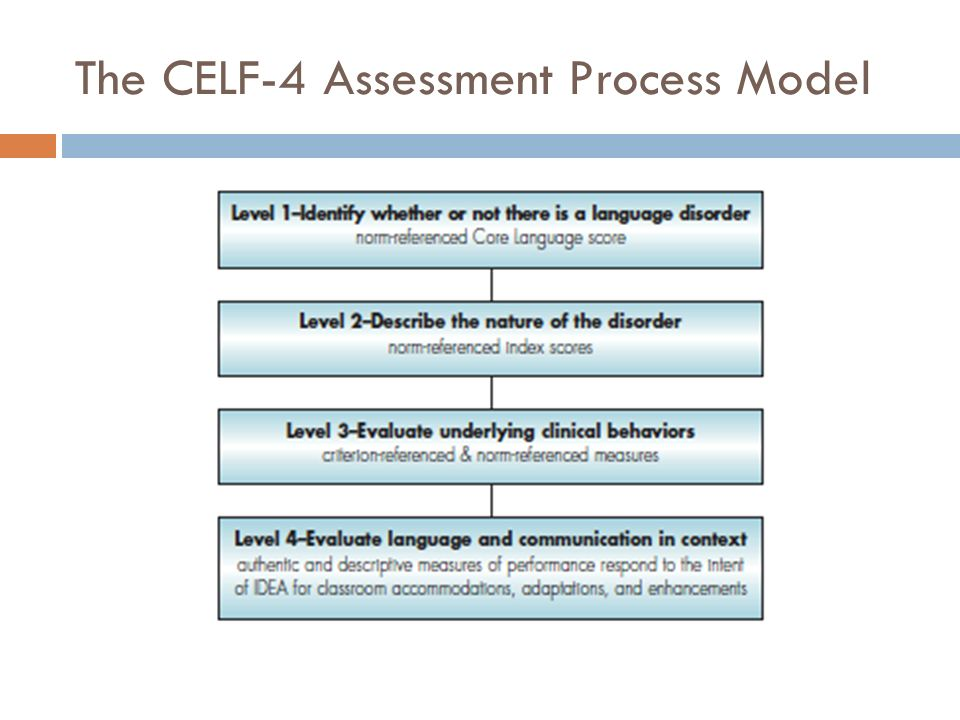 The CELF-4 Assessment Process Model