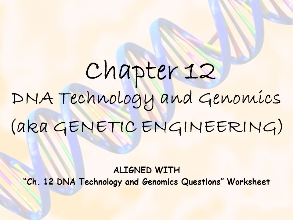 Chapter 12 DNA Technology and Genomics (aka GENETIC ENGINEERING)