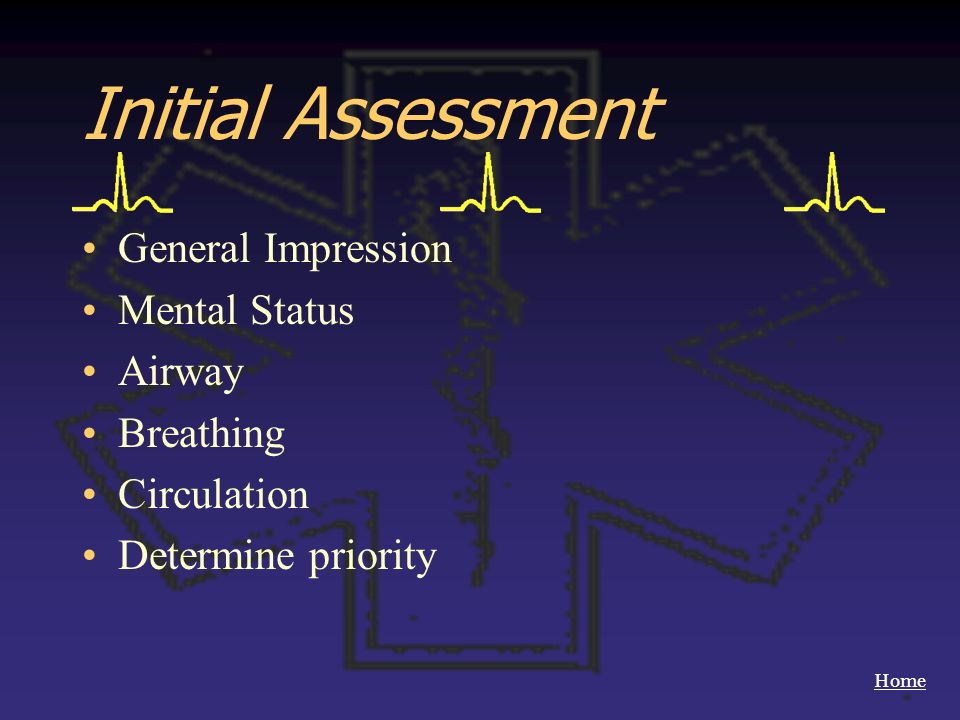 Initial Assessment General Impression Mental Status Airway Breathing