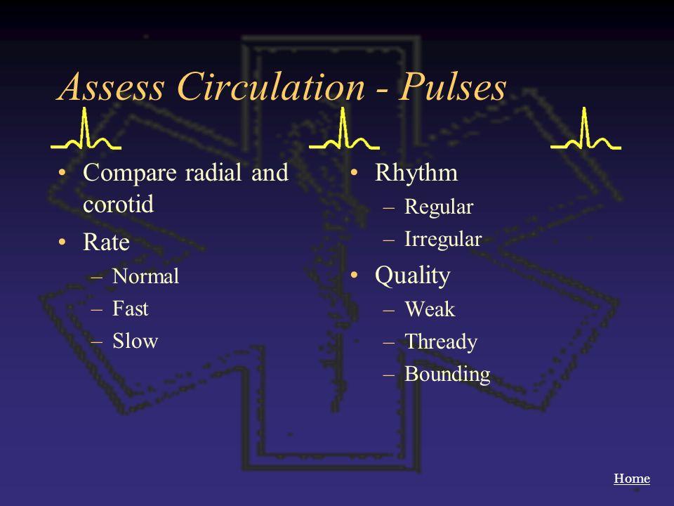 Assess Circulation - Pulses