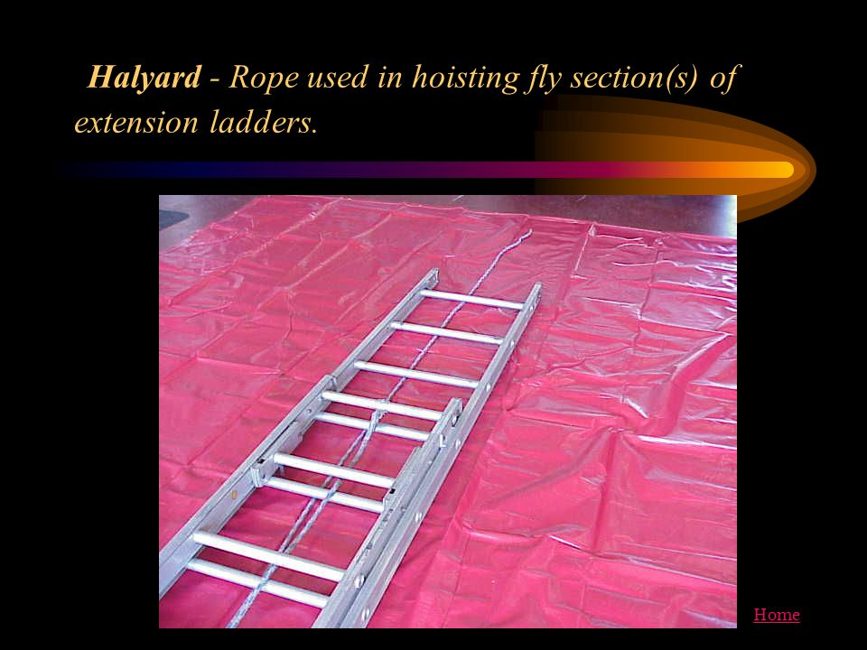 Halyard - Rope used in hoisting fly section(s) of extension ladders.