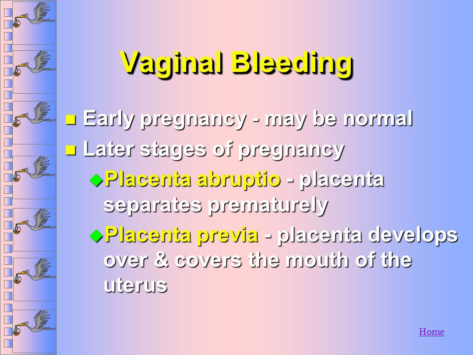 Vaginal Bleeding Early pregnancy - may be normal