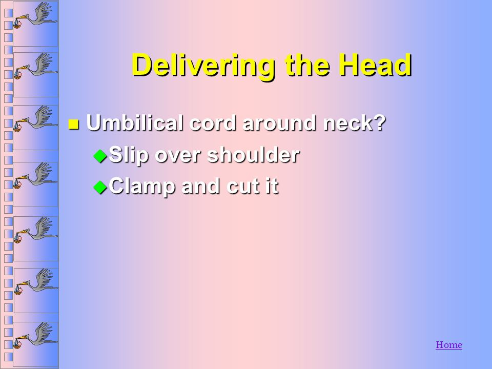 Delivering the Head Umbilical cord around neck Slip over shoulder